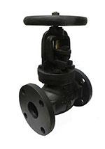 iron globe valve